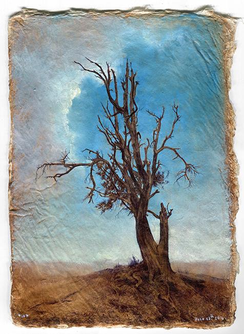 tree107_72dpi107