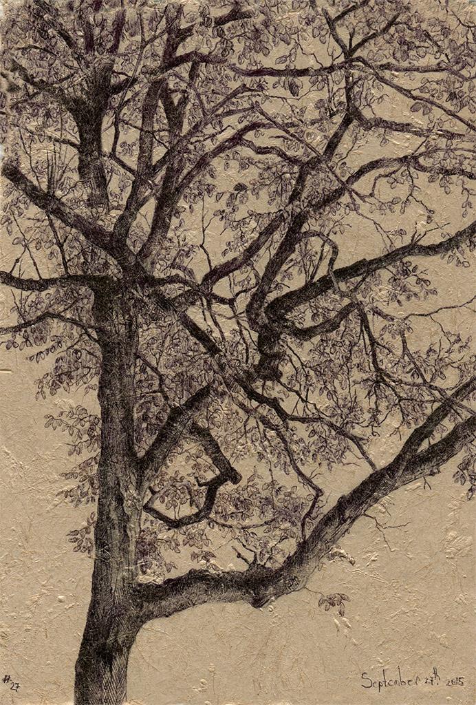 tree27_72dpi